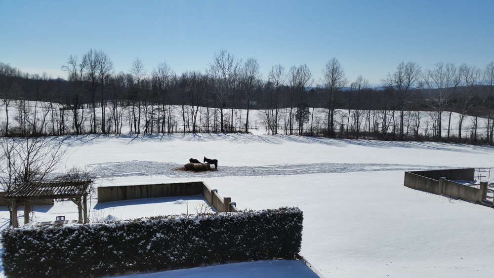 Too cold and snowy for outdoor projects