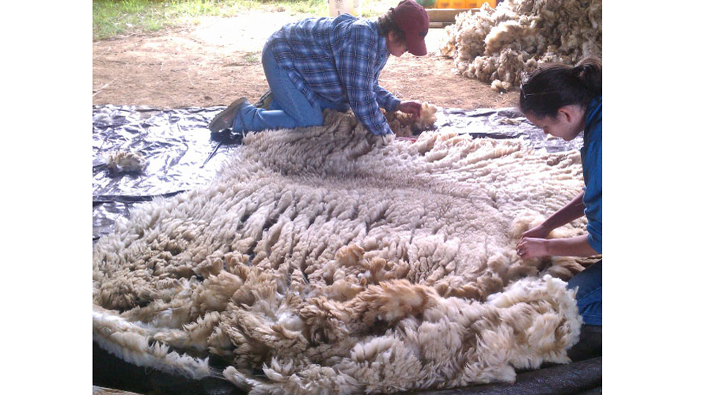 skirting a fleece
