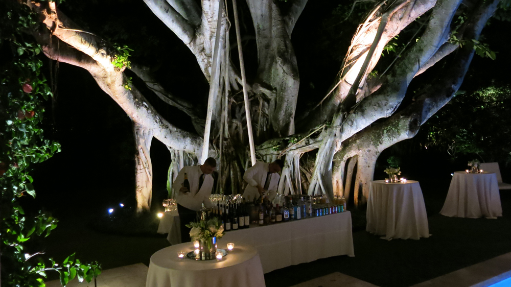 Tom and Marc's garden makes a dramatic bar