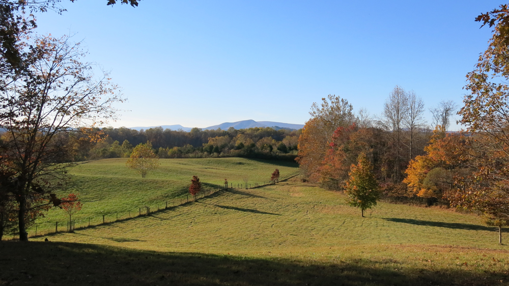 view from hammock hill