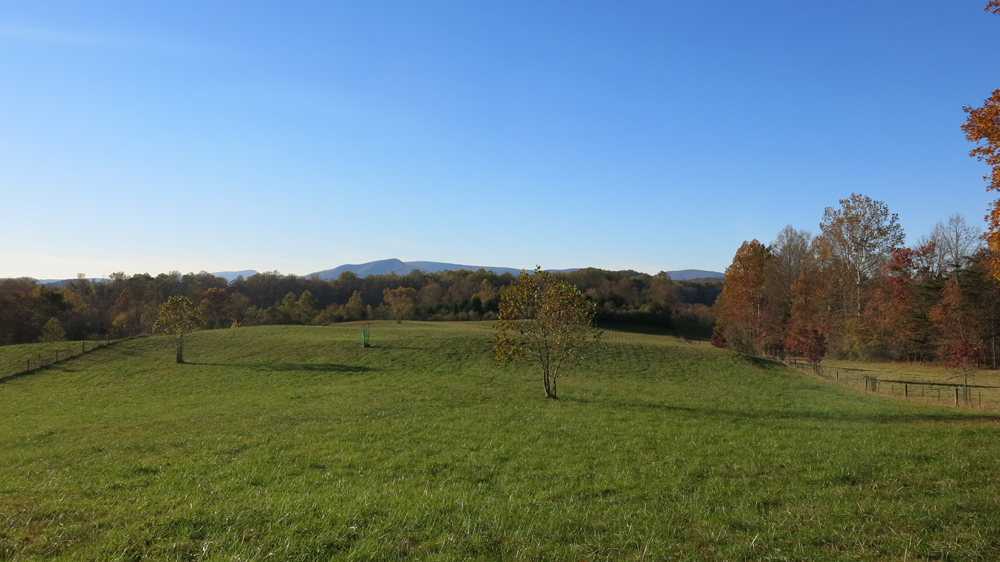 Bank's field view of mountains