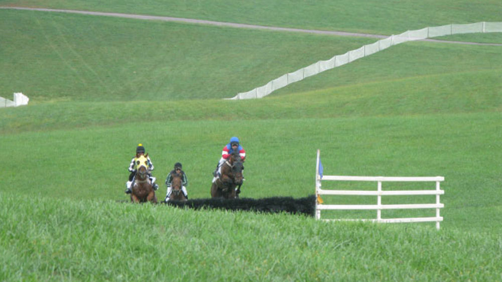 Thornton Hill point to point