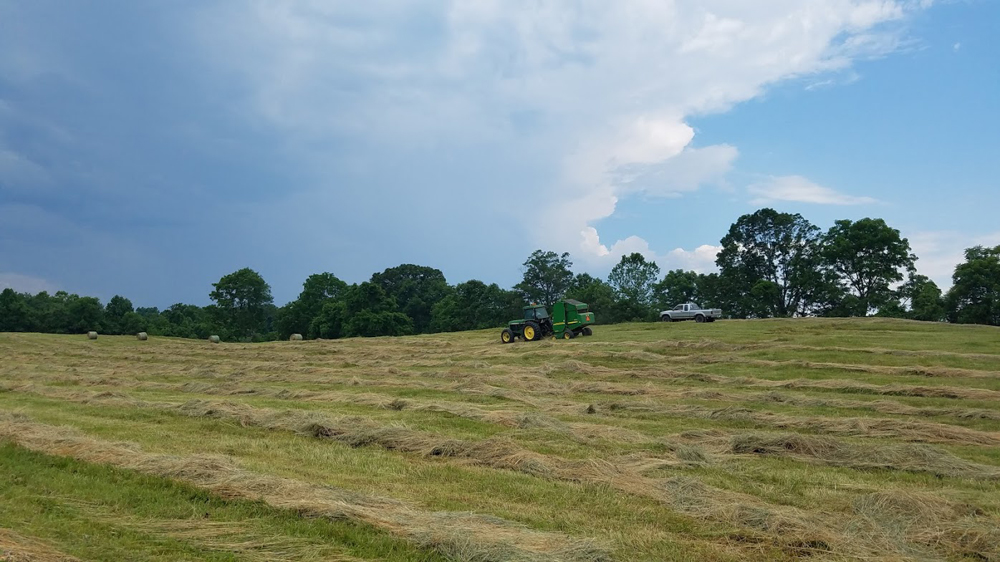 Will we get the hay baled before it rains?