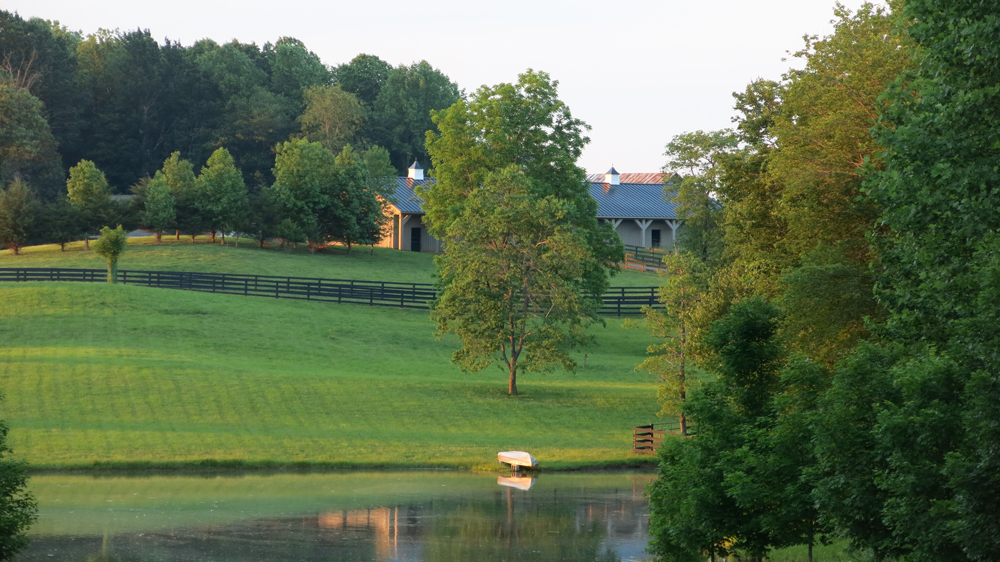 Mellow summer evening view of barns