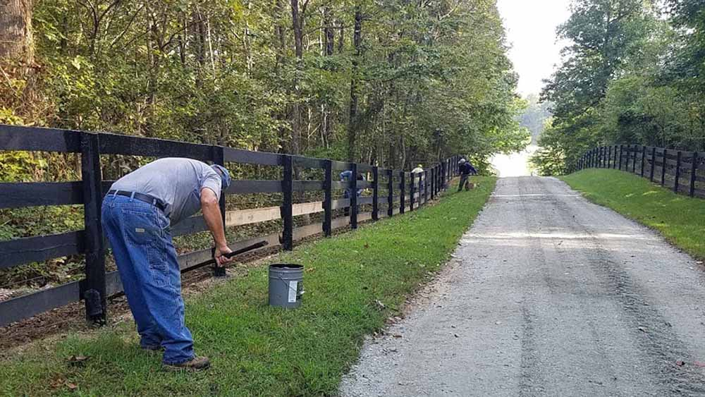 New road and new fencing